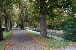 Groen licht voor Harddraverspark en Tolhuispark in Dokkum